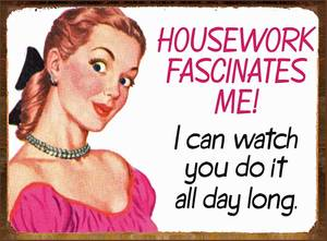 Housework Fascinates Me... funny metal sign