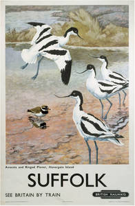 Suffolk Plovers (old rail ad.) fridge magnet    (se)