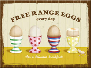 Free Range Eggs steel fridge magnet