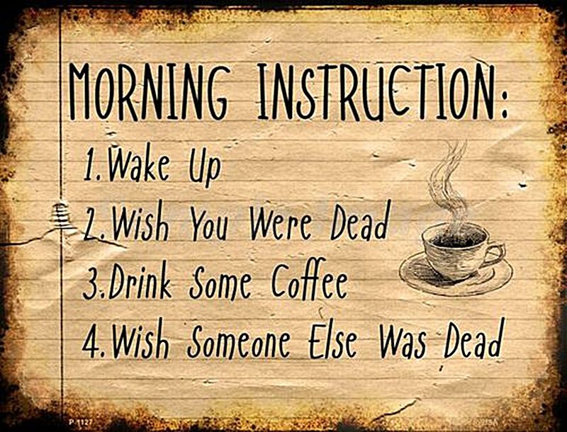 Morning Instructions Wake Up Wish You Were Dead Drink Funny Metal